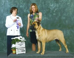 Athena Mildred Championship